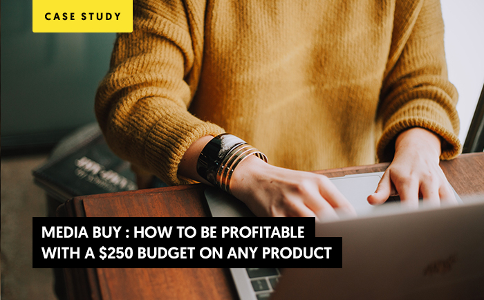 Media Buy Case Study: How to be profitable with a $250 budget on any product.