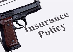 Homeowner's Insurance Policy frincon