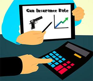 Gun Insurance Rate frincon
